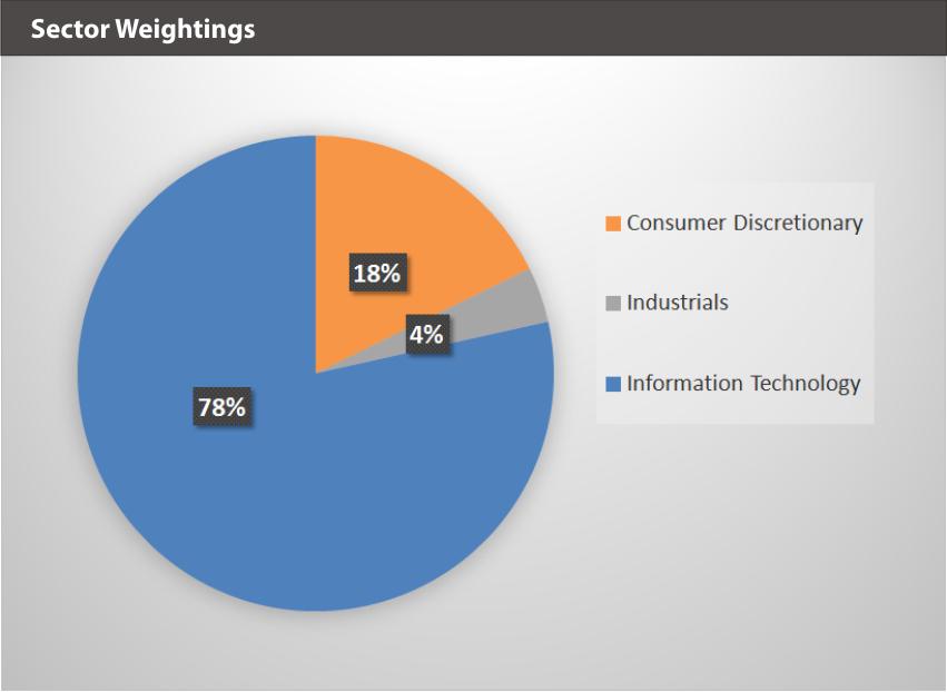 ARVR Sector Weightings