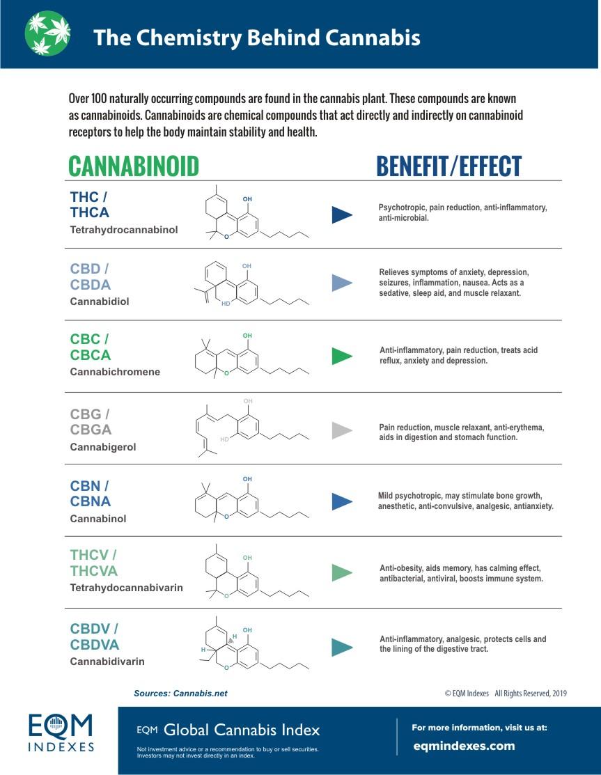 Chemistry Behind Cannabis