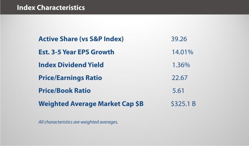 XOUT U.S. Large Cap Index Overview Characteristics
