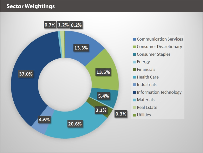 XOUT U.S. Large Cap Index Sector Weightings
